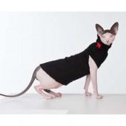 Moda dla sfinksów
