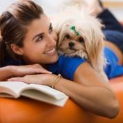 Hipoalergiczne rasy psów – fakty i mity